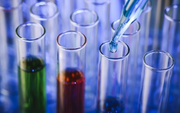 Test de ADN por solo 79€