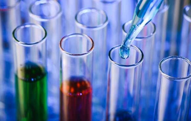 Test de ADN por 79€